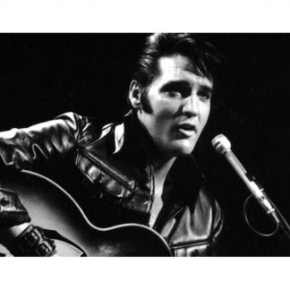 Elvis Presley singing metal tin sign b27-Elvis Presley-23 Metal Sign discount unframed art
