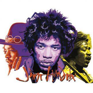 Jimi Hendrix rock music metal tin sign b36-Jimi Hendrix-32 Metal Sign home kitchen wall art living room