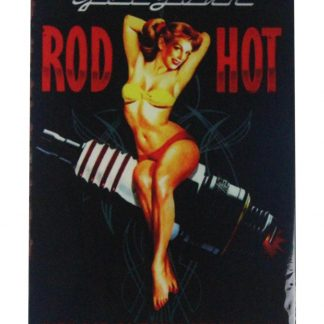 pin-up sexy girl Rod Hot spark plug tin metal sign 0404a Metal Sign cheap unframed prints