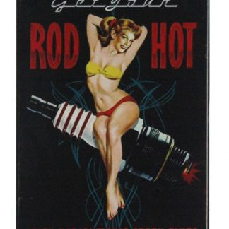 Rod Hot pin-up sexy girl spark plugs tin sign 0697a Metal Sign bar pub signs
