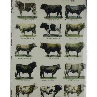 Les animaux de la ferme Farm animals tin sign 0787a Metal Sign animals