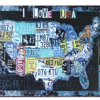 I Love USA American map tin metal sign 1052a Metal Sign American