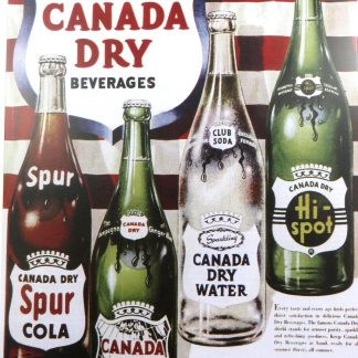 Canada Dry beer tin sign cheap   metalsign04-6 Beer Wine Liquor beer