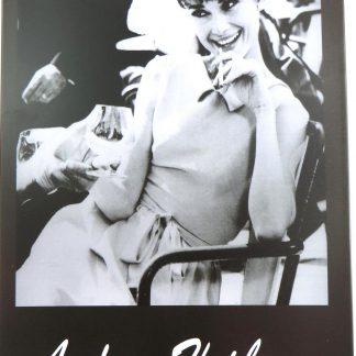 Andrey Hepburn tin sign art   sale online metalsign05-1 Metal Sign Andrey Hepburn