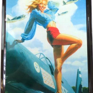 women plane tin sign walls of decor metalsign09-6 Metal Sign & decor