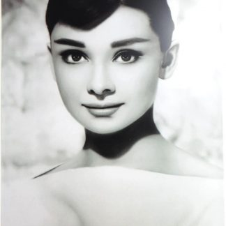 Audrey Hepburn tin sign    metalsign15-3 Metal Sign Audrey Hepburn