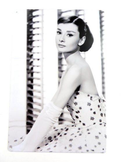 Audrey Hepburn tin sign girl bedroom s metalsign15-7 Metal Sign Audrey Hepburn
