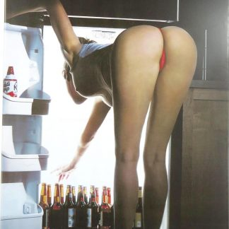 Beer In Fridge sexy women tin sign master  metalsign28-7 Beer Wine Liquor beer